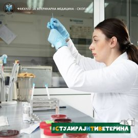 Third enrollment deadline for enrolling students of veterinary medicine at FVMS